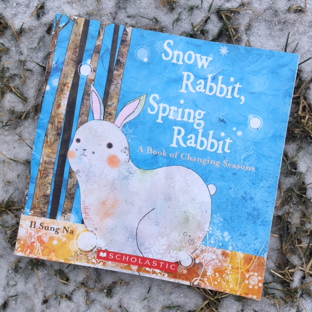 Snow Rabbit Spring Rabbit 1